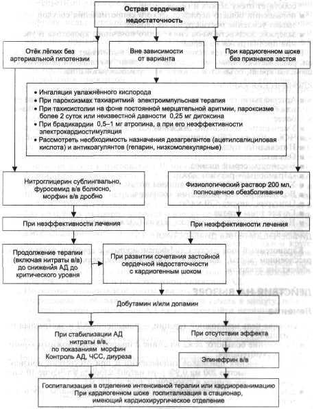 Должностная Инструкция Врача Неотложной Медицинской Помощи